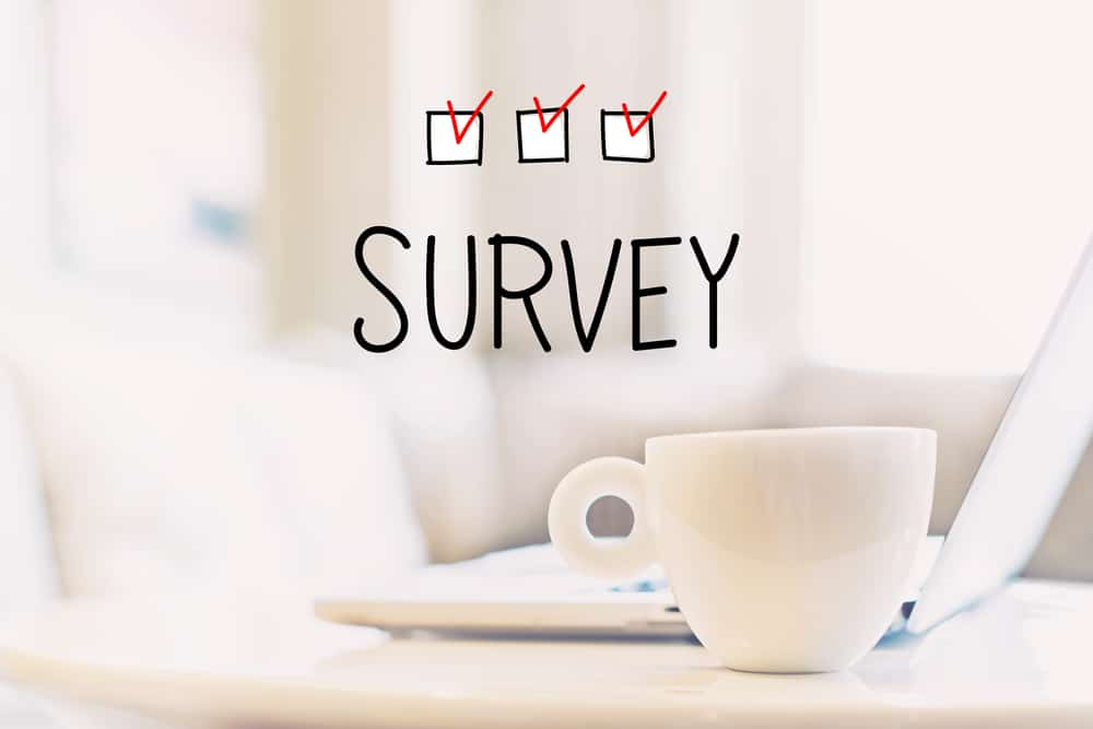 survey for stay at home moms
